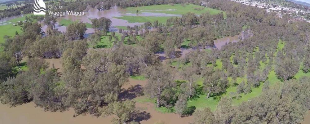 Murrumbidgee River minor flood – Wagga Wagga