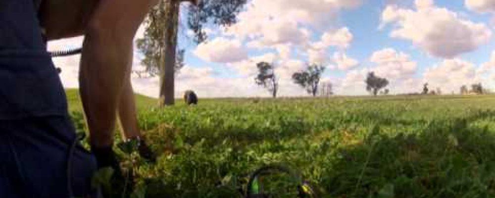 WAGGA NSW AUSTRALIA METAL DETECTING TRIP