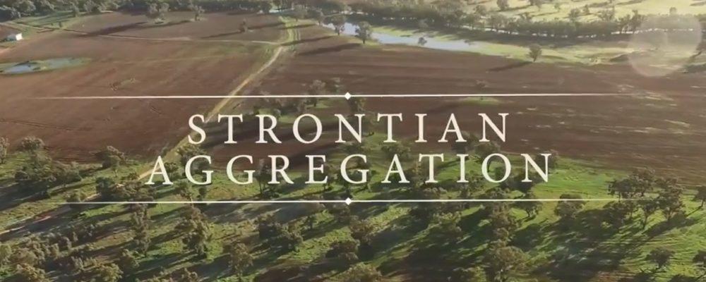 Geoff Palmer – Ray White Rural – Wagga Wagga – Strontian Aggregation