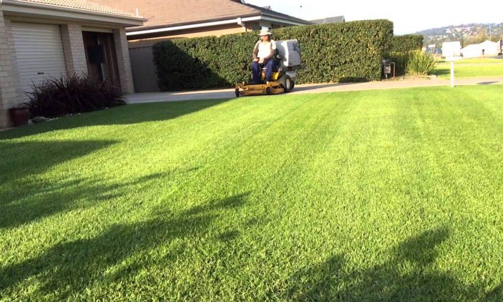 Lawn Mowing WAGGA WAGGA