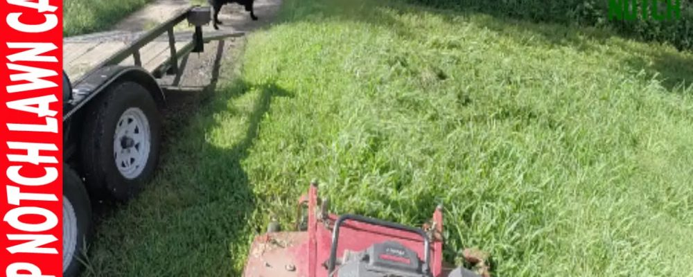 Worst Lawn Care Business Experience