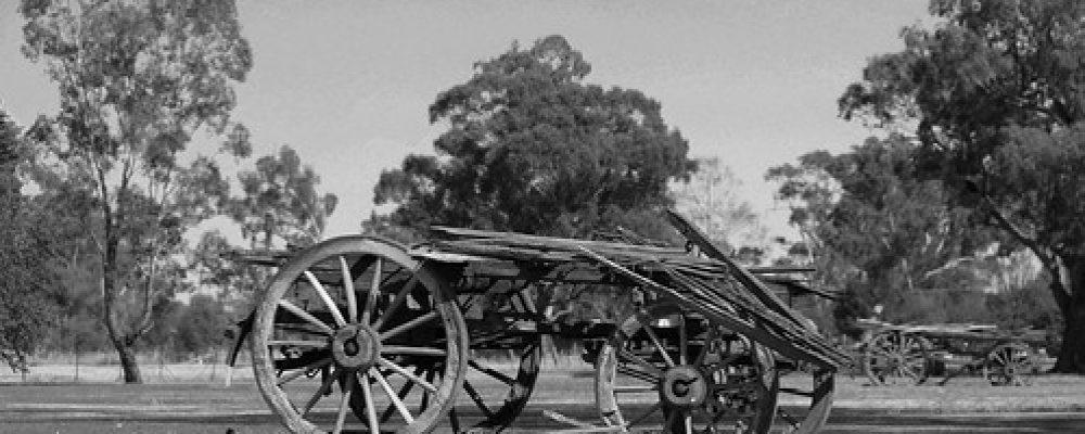 Old Carts at Wagga Wagga NSW