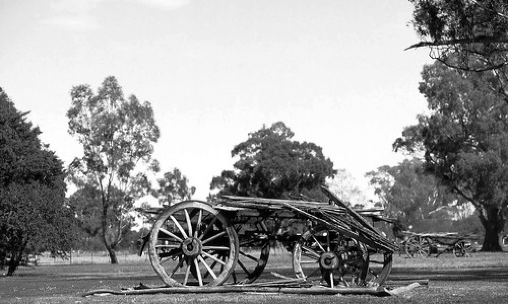 133_18a Wagga Wagga NSW Wooden Wagons 28-10-09